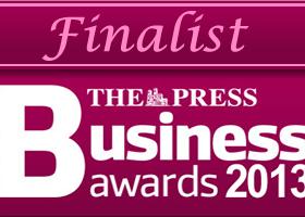 The Press Business Award 2013 - Finalist