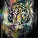 KJD Felid 1 Siberian Snow Tiger
